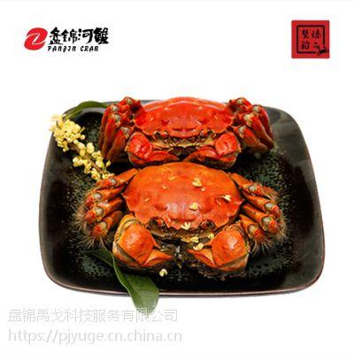 盘锦心得一件代发大闸蟹产河蟹供节自助餐菜品讲究地直图片
