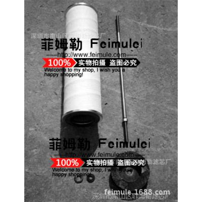 供应    FR1T 颇尔滤芯 FR1L620EH  天然气滤芯 FR20L