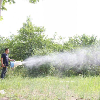 厂家供应JY15A手提式汽油喷雾器 手提式风送喷雾器 果园打药机