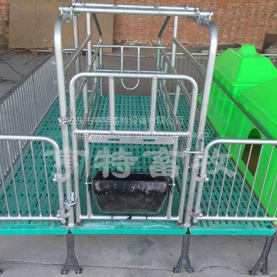 母猪产床复合板+塑料板猪用自动化养猪设备安装设计