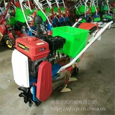 手推式玉米大豆播种机 汽油链轨式施肥播种机 志成热销各种耘播机