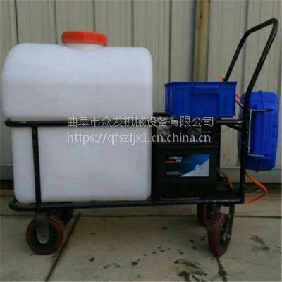 高效率小麦打农药机器 手推式远程喷雾器 小麦除虫喷药机供应厂