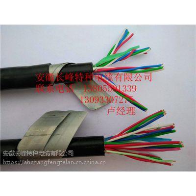 长峰KKV,KKVP,KYJV 聚氯乙烯绝缘和护套控制电缆