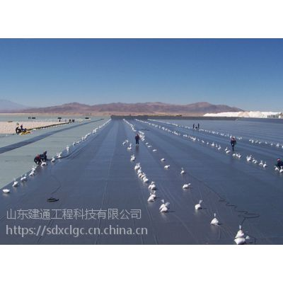 山东恒阳1.0mm聚乙烯高密度HDPE防渗膜(PE薄膜)