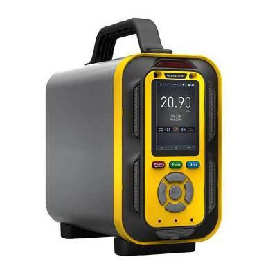 手提式二氧化硫分析仪TD6000-SH-SO2气体测量仪_烟气尾气SO2探测仪
