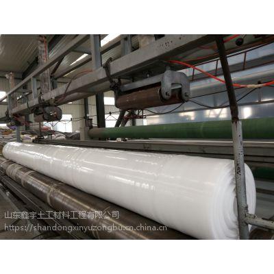 防滑柱点土工膜 山东图库下载专业制造 防渗 排水 防滑