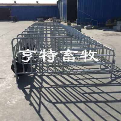 新型养猪欧式定位栏 10猪限位栏占地尺寸