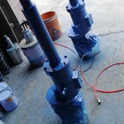 DTC电动推杆 DTC300(涡轮、蜗杆带动)