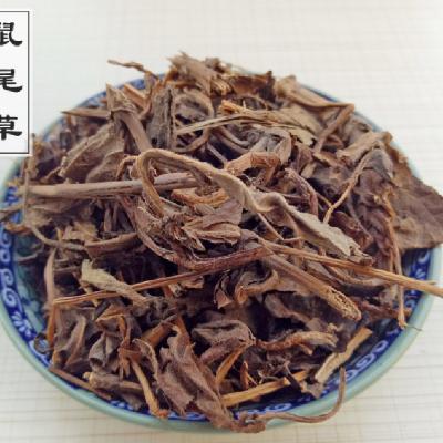鼠尾草药用什么价值 坑苏哪里可以购买到多少钱一公斤