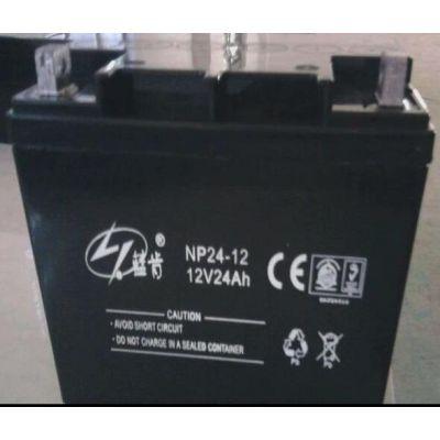 蓝肯蓄电池NP17-12 NP系列 参数报价