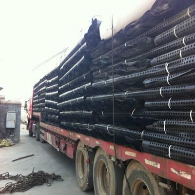 蓄排水板批发 绿化凹凸排水板 土工排水板厂价直销