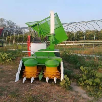 加工定制侧翻式料箱青储机 背负式玉米收割机 山区小块地专用收获机械