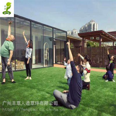 幼儿园庭院绿色仿真地毯草户外休闲运动塑料人造草坪车顶遮阳假草皮