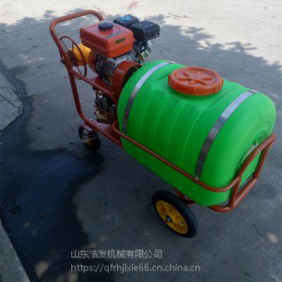 自走式柴油打药机 园林新一代高压喷雾器