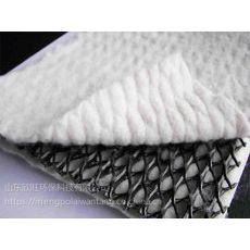 厂家直销HDPE三维HDPE符合排水网
