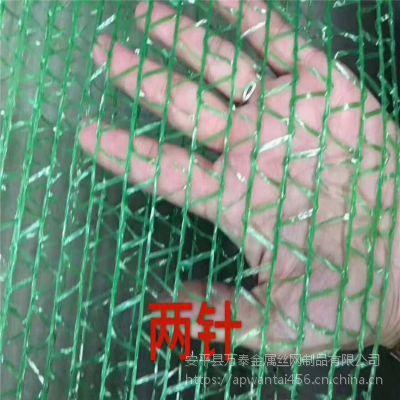 2针塑料防尘网 环保覆盖网 查环保专业网布