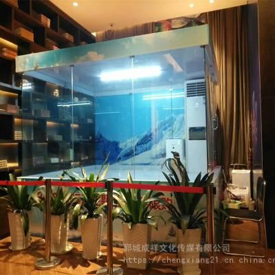 海洋动物出租海狮表演企鹅租赁展览公司