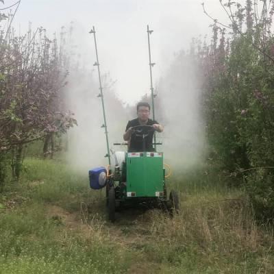 产品上市四驱菜园地喷药机 自走式喷杆喷雾机 农田果树汽油除虫机