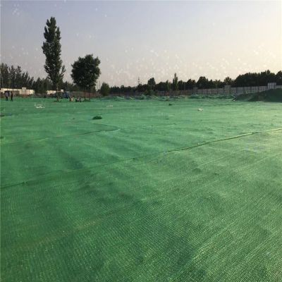 绿色盖土网 工地盖土网 环保遮阳网厂家
