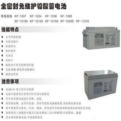 PCM蓄电池KF-1238 12V38AH储能用铅酸蓄电池