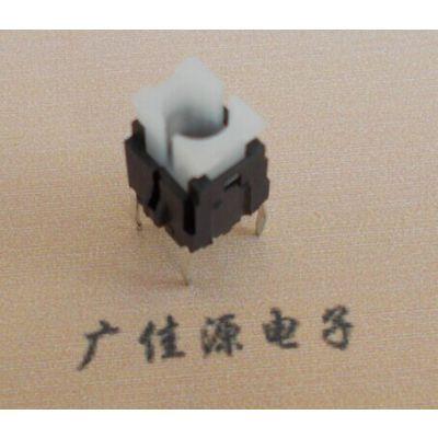 供应供应冰箱电器使用LS601开关,带灯开关,轻克力开关
