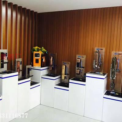 温州 电子锁架 因硕 定制各个尺寸款式智能锁展示柜
