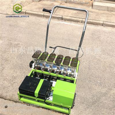 单人手推汽油动力蔬菜播种机四轮拖拉机牵引谷子精播机现货供应