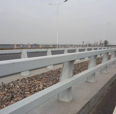 桥梁防撞护栏-聊城飞龙防撞护栏