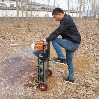 硬土冻土挖坑机/果园栽树钻洞机/大棚立柱钻眼机价格
