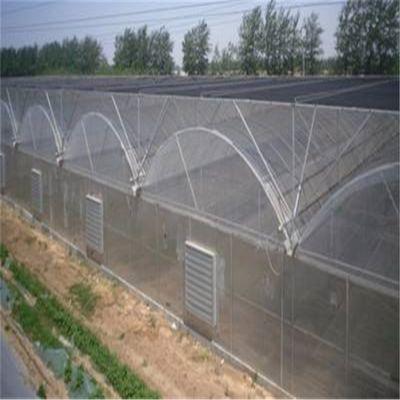 广西连栋温室大棚的多少钱一平方 厂家设计