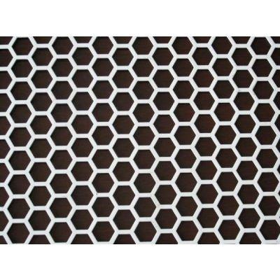安平全特钢板圆孔冲孔网