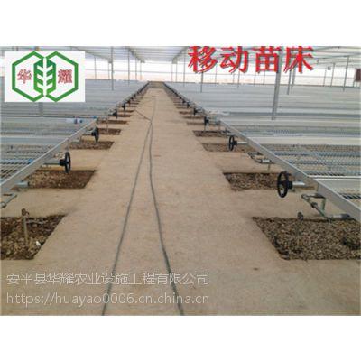 山东滨州温室配套系统镀锌苗床网|移动苗床华耀多重优惠等您来