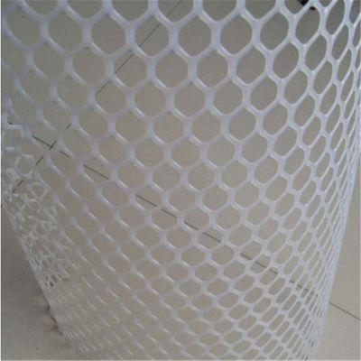 养殖防坠网 鸡床防坠网 塑料养殖防坠网