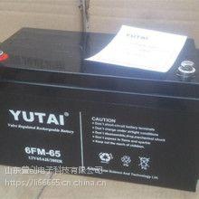 YUTAI宇泰蓄电池6FM-24 UPS电源专用铅酸蓄电池免维修电池
