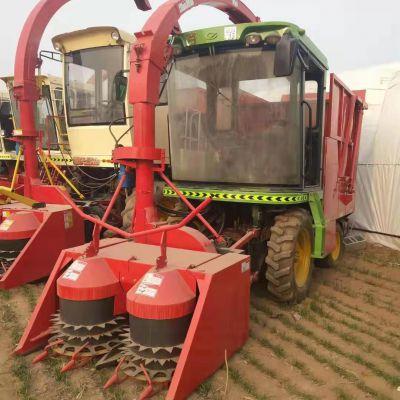 新款自走式玉米秸秆青储机 牧草稻草收获机 茎穗兼收青饲料收割机