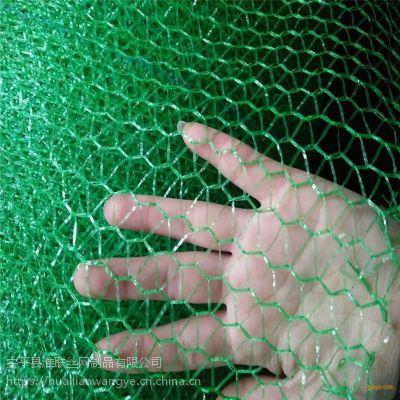 工地盖土网 编织盖土绿网 防尘网覆盖图片