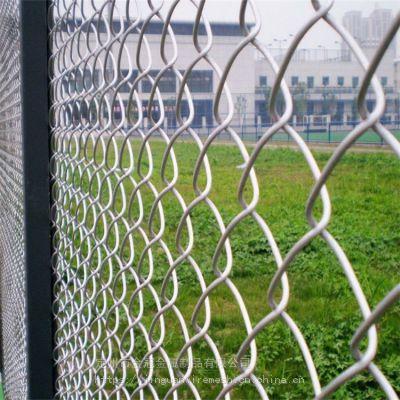 装饰勾花网 绿化用勾花网 活络网 规格齐全
