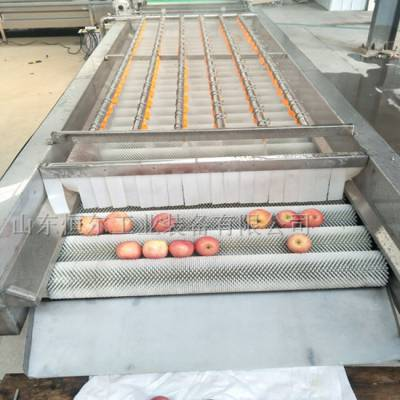 山东恒尔工业装备(图)-韭菜清洗机价格-韭菜清洗机