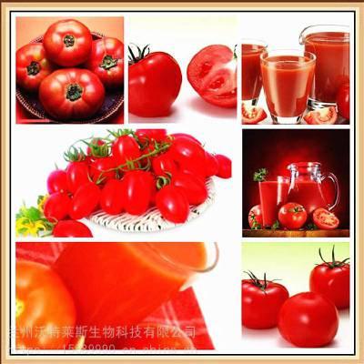 番茄红素5% 番茄提取物 1公斤起订 量大从优