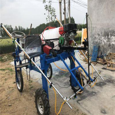 双卷管器推车喷雾器/手推高压拉管式喷药机/高杆式多喷头农药喷雾器佳鑫厂家
