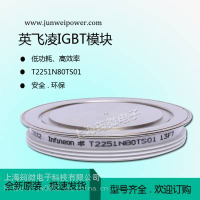 供全新英飞凌功率IGBT可控硅T2251N80TS01价格优惠 欢迎咨询
