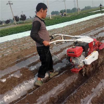 葱田作业培土机 自走式红薯起垄机 菜棚开沟机