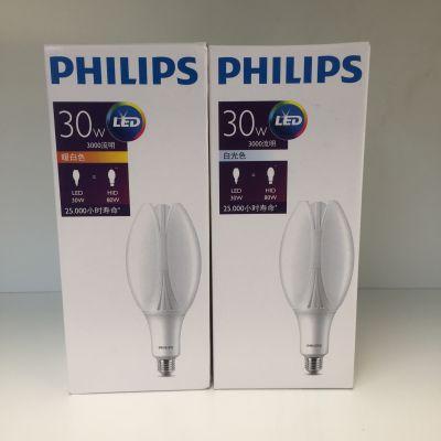 飞利浦经济型LED庭院灯 30W/45W