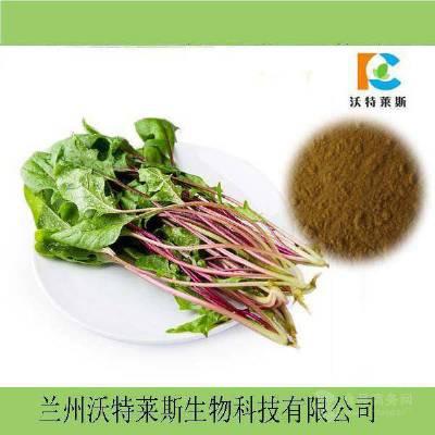 菠菜膳食纤维粉60%~80% 菠菜速溶粉