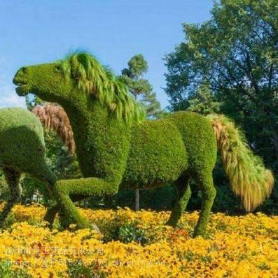 植物绿雕_绿毛球 植物_鸡皮疙瘩绿血植物妖在线阅读