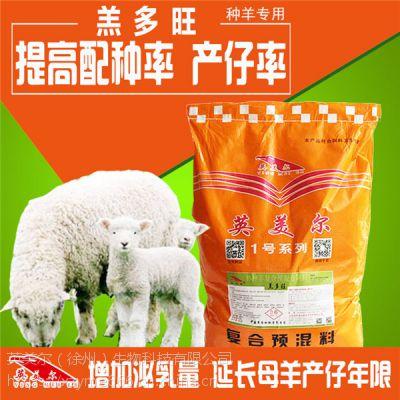 圈舍乌骨母羊养殖饲料怀孕3个月的乌骨羊的饲料