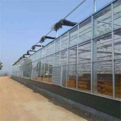 湖北玻璃大棚多少钱一平米 盛鸿建造