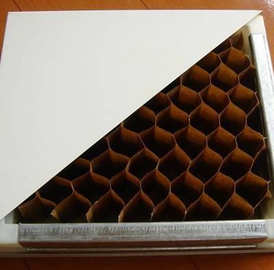 手工纸蜂窝夹芯板价格-连云港手工纸蜂窝夹芯板-大定净化板业