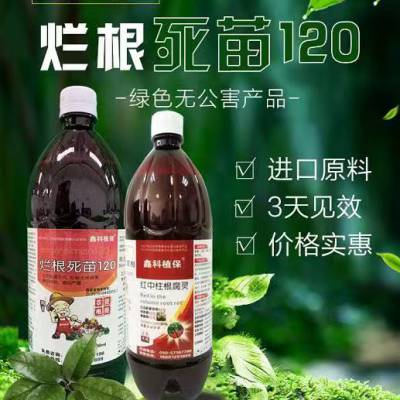 炭疽病农药 农药乐达青 白泰农药主要作用 甜瓜枯萎病烂根死苗120药