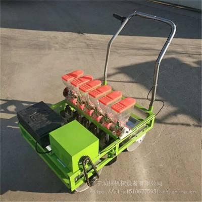 润林供应农用蔬菜播种机 新款单人手推菜籽播种机 萝卜白菜油菜种植机